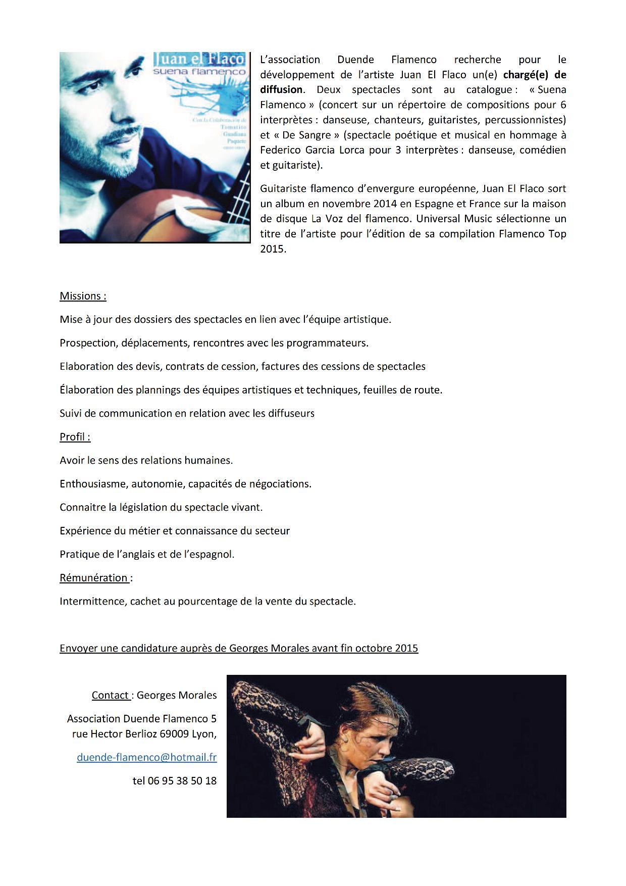 Chargé de Diffusion pour Duende Flamenco
